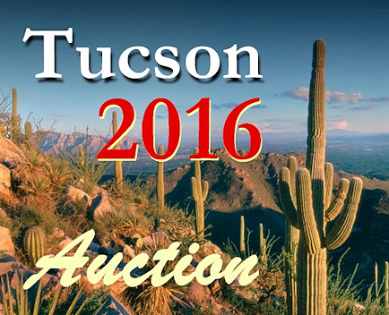 tucsonshow2016auction-small.jpg (123510 bytes)